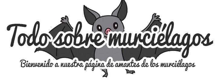 Blog sobre murcielagos